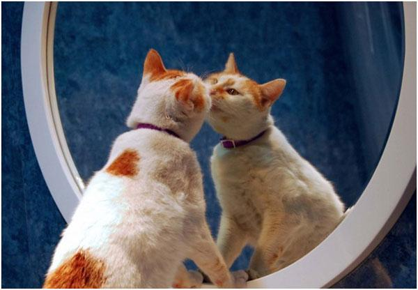 Спать напротив зеркала: почему можно или нельзя, опасности приметы