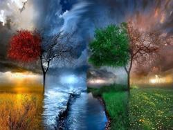 Прогнозируем погоду: приметы о природе