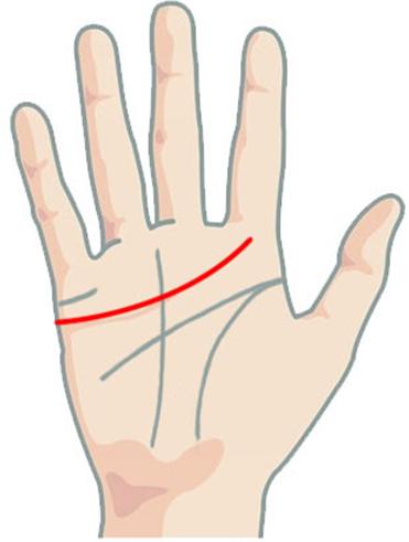 Линия сердца на руке: эмоциональная карта человека