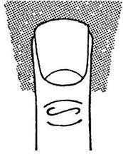 Палец Юпитера: указательный длиннее безымянного