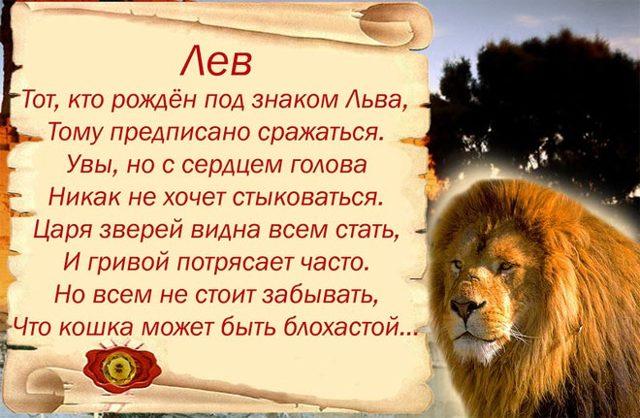 Какие камни подходят львам: женщинам и мужчинам
