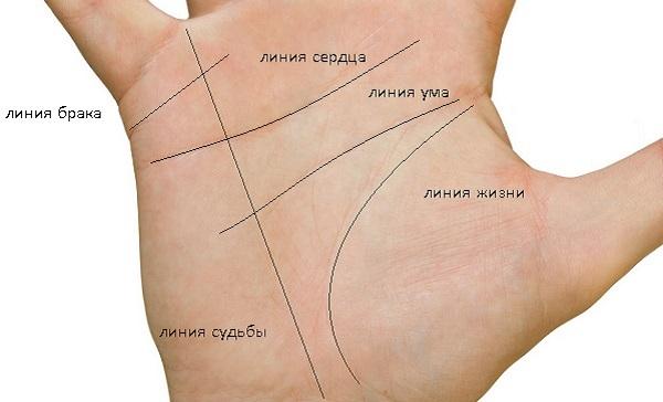 Линия судьбы на руке: значение и расшифровка