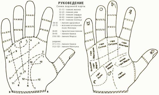 Линия любви и брака на руке: значение и расшифровка