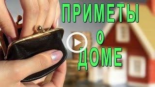 Мышь в доме, квартире: приметы и их значение