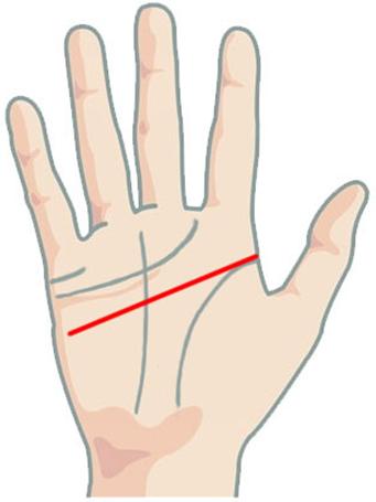 Линия головы на руке: значение в хиромантии