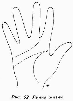 Линия жизни на руке: значение и расшифровка