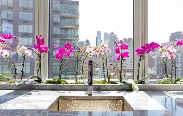 Можно ли держать дома орхидеи: приметы и суеверия